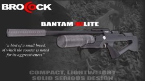 Brocock Bantam Air Rifle