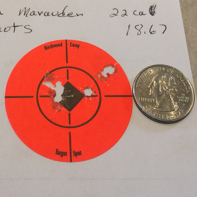 A new brand of pellets maybe be coming to the USA  Rifle
