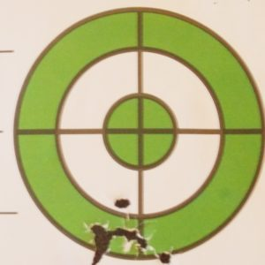 Hatsan AT44 10 Accuracy Shots 19-27