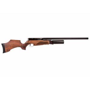 BSA R10 Airgun